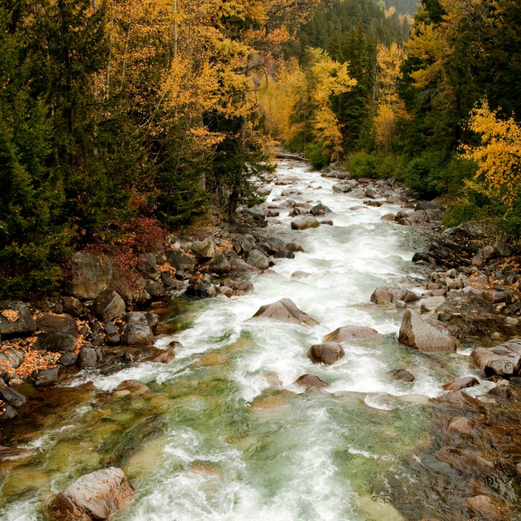 cayoosh creek lilooet in fall