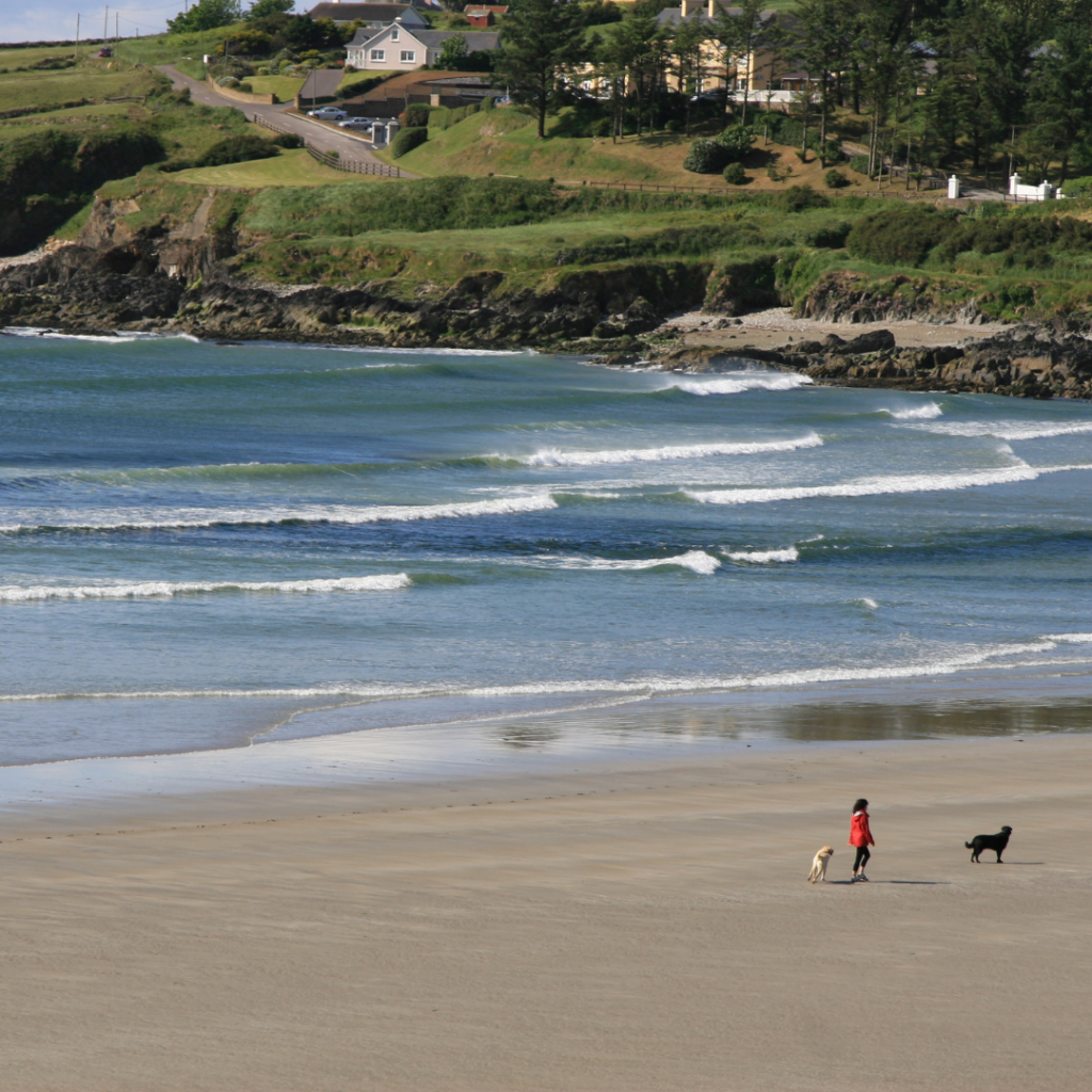 A lady walks her dogs at Inchydoney beach in West Cork