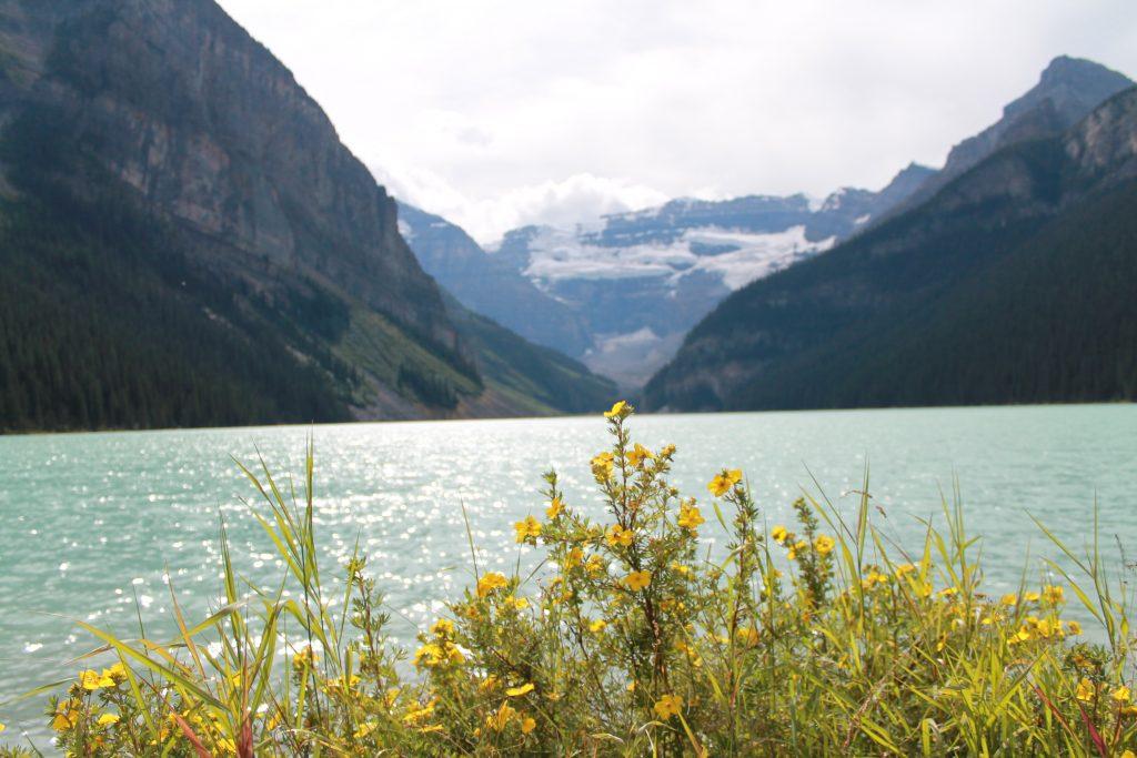 lake louise in summer
