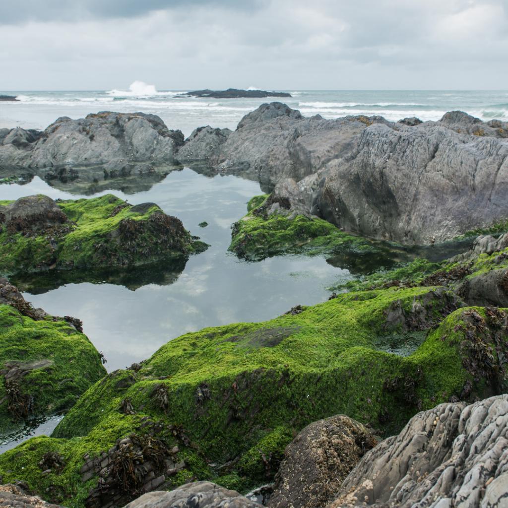 rock pools at owenahincha beach west cork